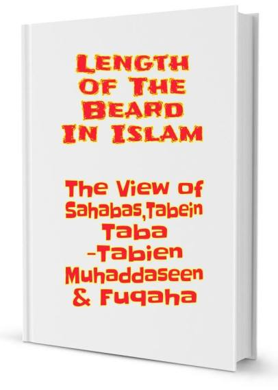 beard book pic